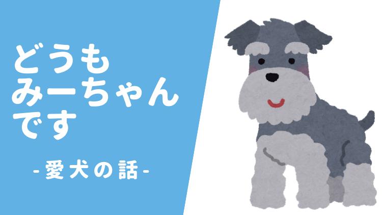 ペット 犬 ミニチュアシュナウザー